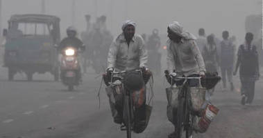 delhi has become a gas chamber - apocalyptic smog causes health concerns for millions