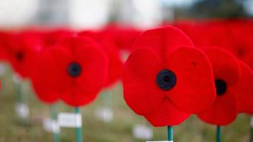 Has the core message of the Poppy Appeal been diluted?