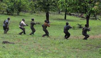 twelve maoists arrested in bastar division