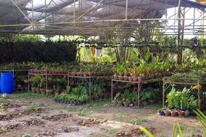 Synthetic food among many pressure points for farmers