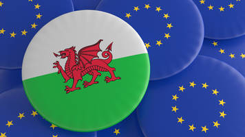 bid for wales and scotland 'veto' power on brexit bill