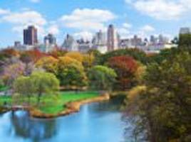 Climate change speeds up the growth of trees in cities