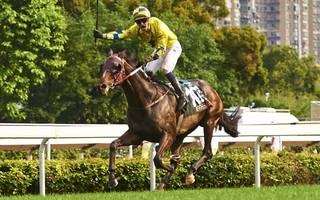 werther looks sweet bet in cup