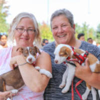 PetSmart® and PetSmart Charities® Host Their Most Successful November National Adoption Weekend Ever, Second-Best to Date