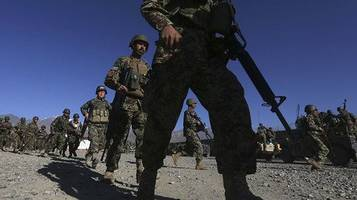 Afghan opium production at record high despite British troops dying to stamp it out