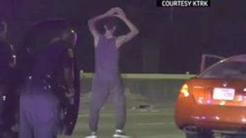 Chase suspect dances for cops before police dog ends jig