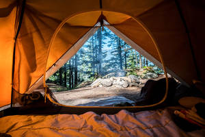 get outside this thanksgiving with free camping from hipcamp