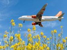 easyjet on the up as rivals suffer