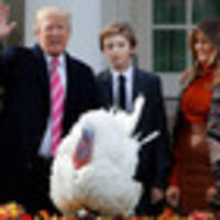 Donald Trump jokes about slaughtering Obama's pardoned turkeys, but lawyers said he can't