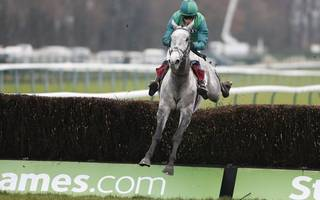 horse racing betting tips: bristol can channel his energy at haydock