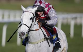 Horse racing betting tips: Drop in trip and low weight will suit Gardefort