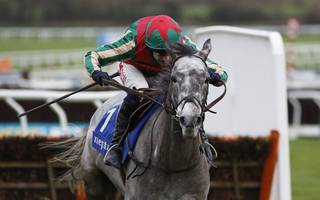 Horse racing betting tips: Keep plenty of Champers On Ice for Verni