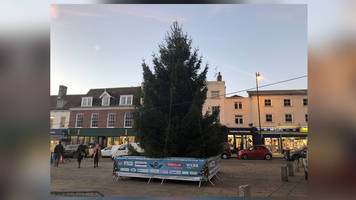 sudbury's replacement for 'hurricane' tree arrives in time for christmas fair