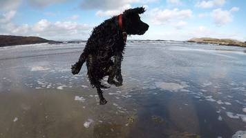 your pictures of scotland: 17-24 november