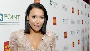 Glee star Naya Rivera charged with domestic violence against her husband