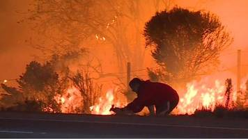 Man saves rabbit from California wildfires