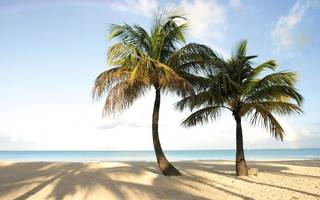 desperate for some winter sun? get yourself down to antigua