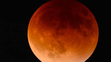"how to watch the ""super blue blood moon"" on jan 31"