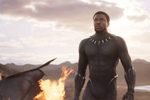 first 'black panther' reactions are in: 'elevates the superhero genre to new heights'