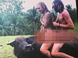 brit probed for letting drunk tourists ride buffalo naked