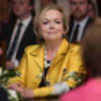 Heather du Plessis-Allan: Judith Collins is the right person for the job, for now at least