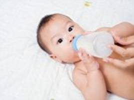 world's first camel's milk baby formula launches