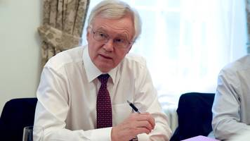 Brexit: David Davis rejects 'Mad Max-style dystopia' claims