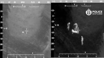 police helicopter spots suspect hiding in tree after chase