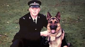 memorial planned for fallen 'hero police dogs'