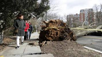 seven killed, 1mn without power as massive storm pounds us