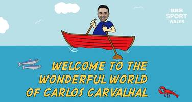 sardines, f1 cars and picnics - carlos carvalhal's funny analogies