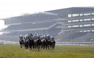 cheltenham clues aplenty at grosvenor's reading preview