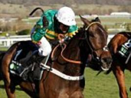 buveur d'air retains champion hurdle at cheltenham 2018