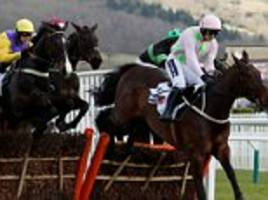 Summerville Boy wins Supreme Novices' Hurdle at Cheltenham Festival