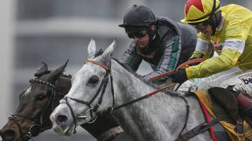 Cheltenham Festival 2018: Altior fit to run in Queen Mother Champion Chase