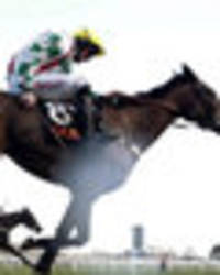 ruby walsh injury: jockey could be out of cheltenham festival with suspected broken leg