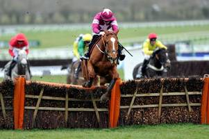 No horse deaths on Ladies Day at Cheltenham Festival