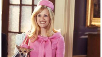 'the moment i gave reese witherspoon my legally blonde dissertation'