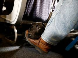 12 times united was america's most hated airline (ual)