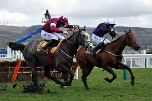 Sixth horse confirmed dead from Cheltenham Festival 2018 as British Horseracing Authority promises review