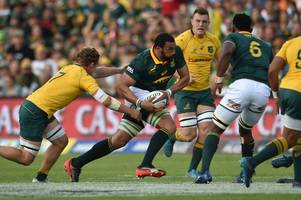 rugby rumours and transfer news: scarlets sign springbok, bristol looking at scotland international