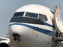 chinese plane is left with a hole in nose cone after striking a bird
