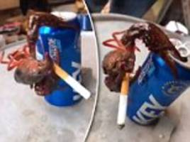 crazy viral video of a crawfish hanging on a beer can having a smoke goes viral