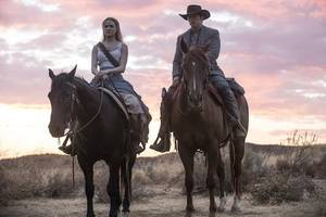 'westworld' creators will 'post a video that lays out plot' for season 2 – if reddit really wants it