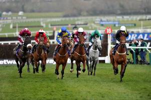 owners who paid big money for a cotswolds cheltenham festival runner spend again for grand national contender seeyouatmidnight