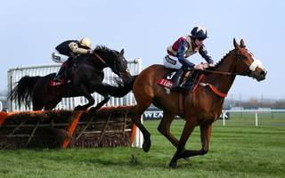 horse racing betting tips: i'm serious about darius in aintree hurdle