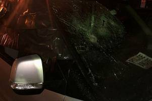 brentwood man has car smashed by armed gang while he was inside