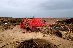 this is what we found when we visited a gower beach to look for plastic pollution