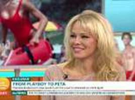 'hero' julian assange should be free to go says friend pamela anderson