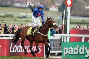two-time cheltenham festival winner cue card retires